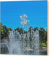 Dancing Fountain Wood Print