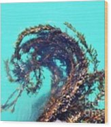 Dancing Kelp Wood Print