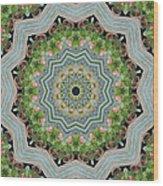Dancing Mandevilla Blossom Kaleidoscope Wood Print