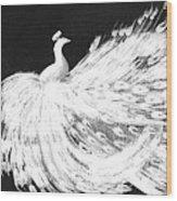 Dancing Peacock Black Wood Print