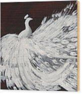 Dancing Peacock Burgundy Wood Print
