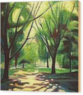 Dancing Shadows Wood Print by Sheila Diemert