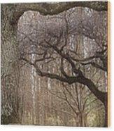 Dancing Trees Wood Print