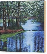 Dancing Waters Wood Print