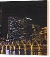 Dancing Waters Rear Shot Wood Print
