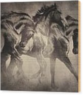 Dancing With Stallions Wood Print