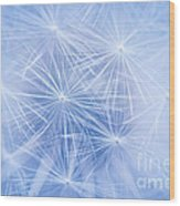 Dandelion Atmosphere Wood Print