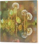 Dandelion Delight Wood Print