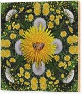 Dandelion Grove Mandala Wood Print