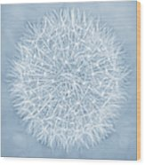 Dandelion Marco Abstract Blue Wood Print