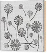 Dandelion Seeds Grey Wood Print