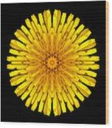 Dandelion V Flower Mandala White Wood Print