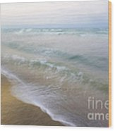 Dania Beach Wood Print