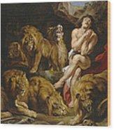 Daniel And The Lions Den Wood Print