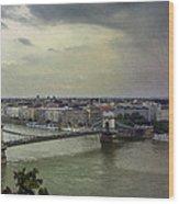 Danube River Wood Print