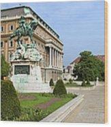 Danube Terrace At Buda Castle In Budapest Wood Print