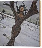 Daphene Sculpture On A Winter Day Wood Print