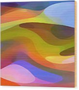 Dappled Light 9 Wood Print