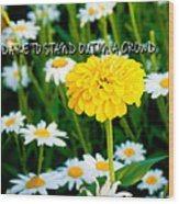 Dare To Stand Out In A Crowd Wood Print