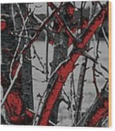 Dark Branches Wood Print