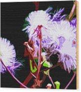 Dark Dandelions Wood Print