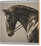 Dark Dressage Horse Old Photo Fx Wood Print by Crista Forest