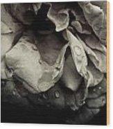 Dark Flower 13 Wood Print