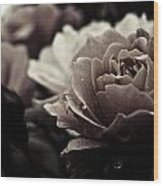 Dark Flower 20 Wood Print