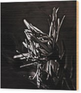Dark Flower Wood Print