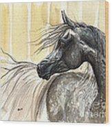 Dark Grey Arabian Horse 2014 02 17 Wood Print