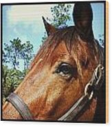 Dark Horse Wood Print by Chasity Johnson