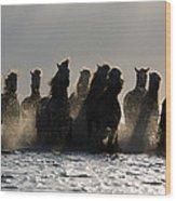 Dark Horses Wood Print