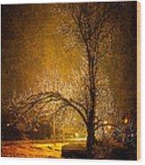 Dark Icy Night Wood Print by Sofia Walker