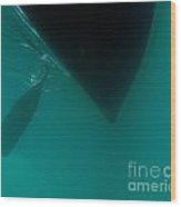 Dark Paddle Canoe Hull Silhouette Floating Wood Print