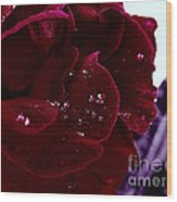 Dark Red Rose Wood Print