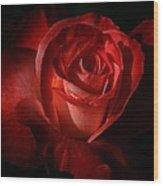Dark Red Rose Wood Print
