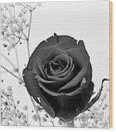 Dark Rose Sq Wood Print