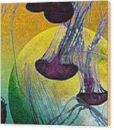 Dark Side Of The Moon 5d24939 Painterly M111 Long Wood Print