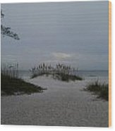 Dark Skies Over The Beach Wood Print