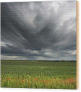 Dark Storm Clouds Over A Field With Red Wood Print