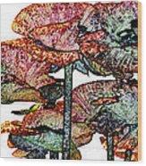 Dark Stroke Poppies Wood Print