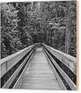 Dark Stroll Wood Print