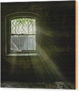 Darkness Revealed - Basement Room Of An Abandoned Asylum Wood Print