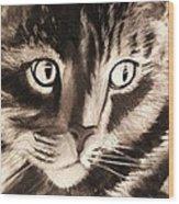 Darling Cat Wood Print