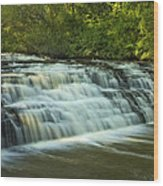 Darnley Cascade Wood Print