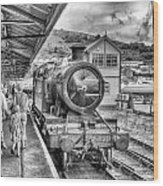 Dart Valley Railway Wood Print