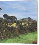 Dartmoor Wood Print