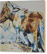 Dartmoor Pony Wood Print