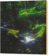 Dartmoor Stream Wood Print