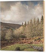 Dartmoor View Wood Print